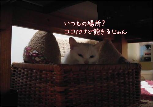あきる.JPG