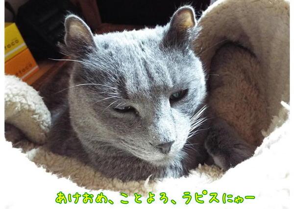 あけおめラピ.JPG