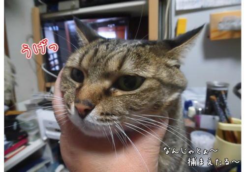 いや~~2.JPG