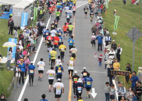 とくしまマラソン2016.JPG