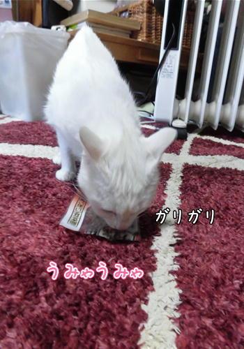 はくご飯6.JPG