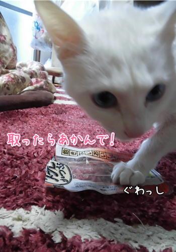はくご飯7.JPG