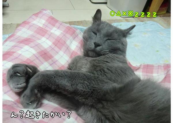 らぴ眠4.JPG