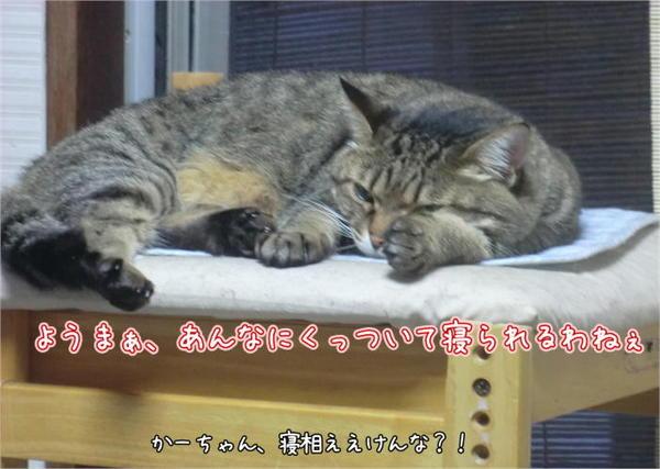 らぴ眠6.JPG