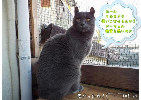 使いこなせる?.JPG