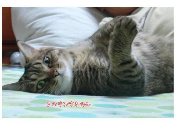 好き3.JPEG