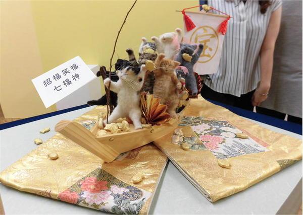 猫まつり.JPG