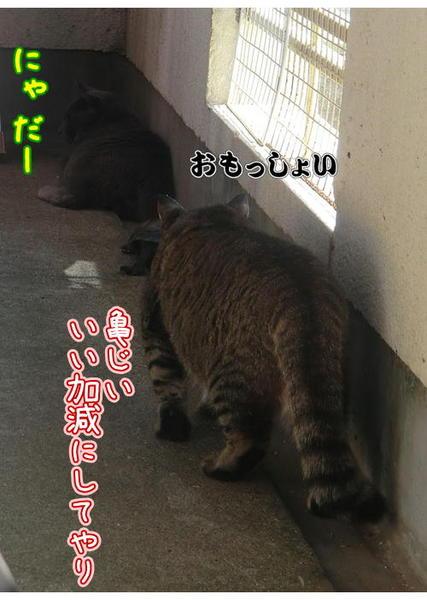 遊ぼう5.JPG