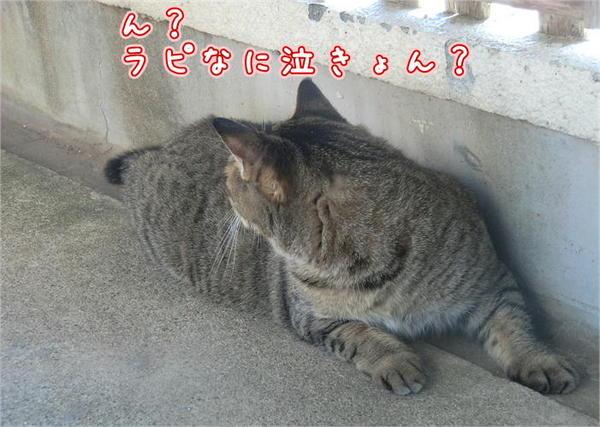 遊ぼう3.JPG