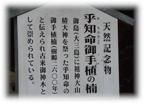 大山祇神社2.JPG