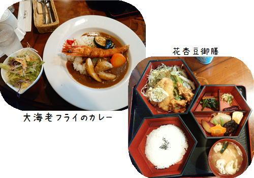花杏豆.JPG