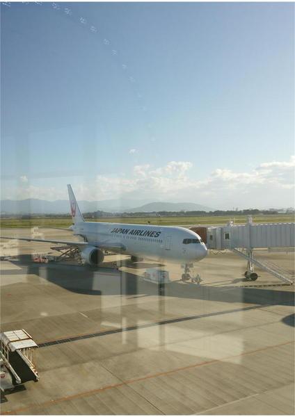 阿波おどり空港.JPEG